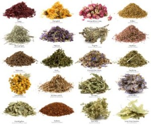 Herbs aren't just for cooking (witchcraft)