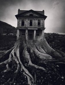 Creepy-Houses-28